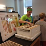 Exploring the beekeeping equipment