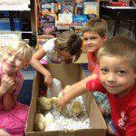 Chick Hatching program