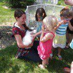 Touching an angora rabbit