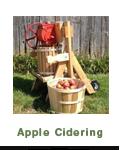 Apple Cidering